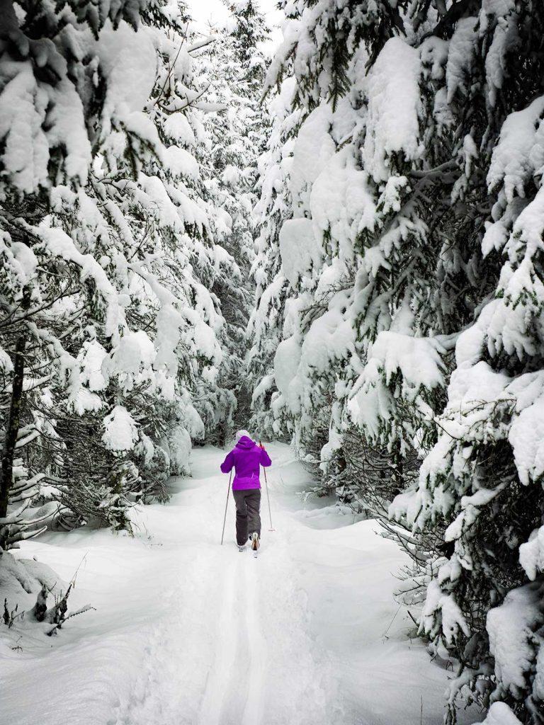 Nordic-Skiing_simon-matzinger-561417-unsplash